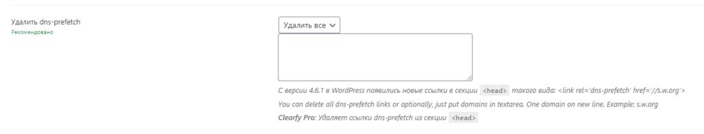 директива с DNS Prefetch клиарфая