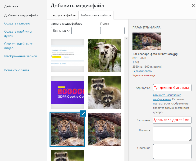 Вставка атрибута alt в устаревшем редакторе WordPress